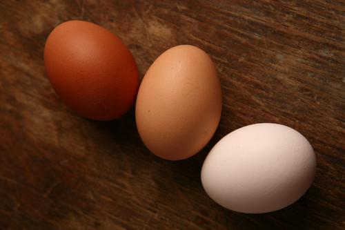 Öt könnyű tojás