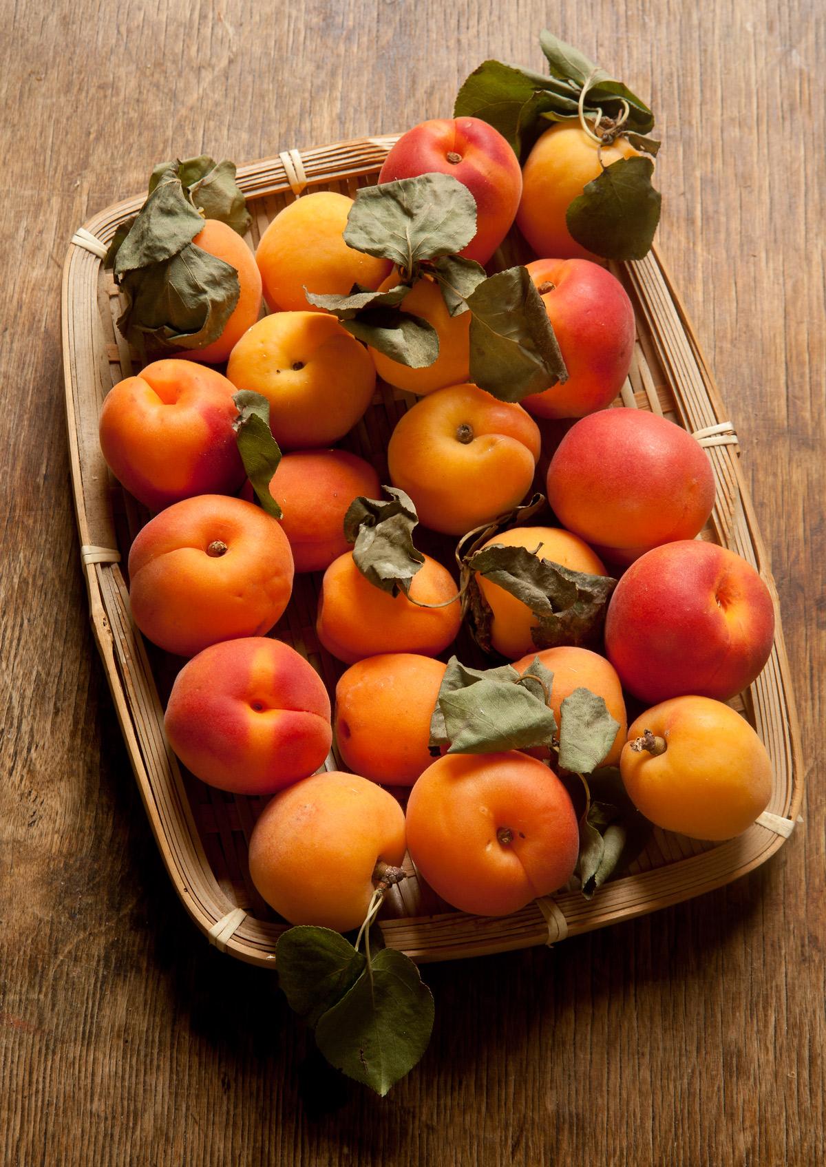 Gyümölcsös bukék