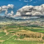 Vista_de_La_Rioja_desde_Briones_Emilio García from Parla